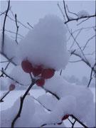Die Schneehutfrau