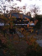 小諸懐古園の入り口です。桜より、紅葉の方が似合うかと思いましたが、私見です。
