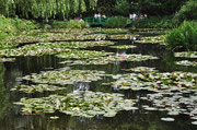 Garten des Malers Claude  Monet in Giverny