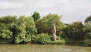 Landschaft an der Seine
