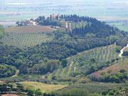 Landschaft um Campilia Marittima