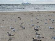 Am Strand von Swinemünde