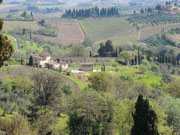 Die Hügel um San Gimignano