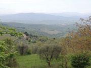 Blick von Castellina in Chianti
