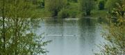 Ein Blick auf die Wasserlandschaft