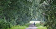 Radfahren in schöner Landschaft