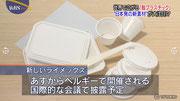 食品のパックや包装紙など紙とプラスチックの代替え