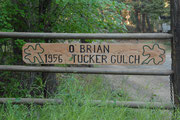 O. Brian