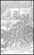 Les anciens ornaient les bâtons avec art. Voyez les bâtons à étoiles d'or : Les pains bien mous, arrosés de solution de colle forte, sont enveloppés dans des feuilles d'or, séchés, pétris en bâtons, mis dans la cendre, enfin polis avec un morceau de jade.