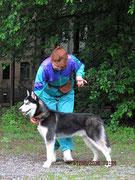 Сибирский хаски Асай и хэндлер Громова Оксаналабрадор