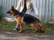 Кампина фон Нордэн-Штэрн, 7 мес 8 дн
