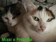 Missi & Priscilla