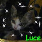 Luce ci ha lasciati il 27 settembre 2012