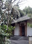 サガノ・サンガ本堂
