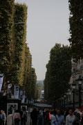 Côté des Champs