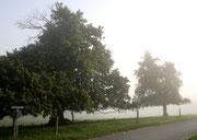 Entrée du village - Côté Chauny