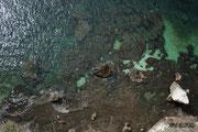 Bonifacio - Vue plongeante