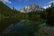 Natur pur am Kreuzteich, direkt vor dem touristischen Grünen See