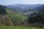 Panoramablick in das Mürztal