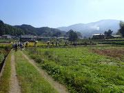 忍坂山を眺めながらゴールの石位寺を目指します。