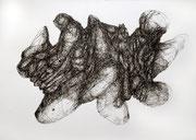 231116, Sepia Federzeichnung, 42x59,4 cm