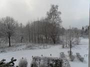 Schneeflöckchen......