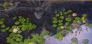 Leon's Pond