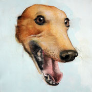 "SOLD - ""Fantastic dog! 3"" - acrylic on canvas 40x40cm"