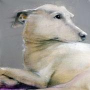 "SOLD - ""Fantastic dog! 2"" - acrylic on canvas 40x40cm"