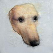"SOLD - ""Fantastic dog!"" - acrylic on canvas 40x40cm"