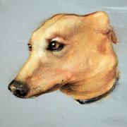 "SOLD - ""Fantastic dog! 4"" - acrylic on canvas 40x40cm"