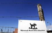 Die MDZANANDA ANIMAL CLINIC im Township Khayelitsha.