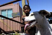 Hier können die armen Bewohner ihre Haustiere kostenlos behandeln lassen.