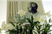 Schon in unserem Johannesburger Quartier wurde klar: die Südafrikaner lieben ihren Volkshelden Nelson Mandela...