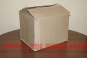 Упаковочная коробка полуавтомата Элсва ПДГ-220ИЕ
