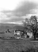Ordoves. Fototeca AFS. © Javier Ara Cajal.