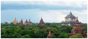 Varias pagodas destacan entre árboles de tamarindo, en Bagán. © Daniel Roca García.