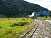 El tren del fin del mundo, Parque Natural Tierra de Fuego. © Leonardo Ara Pueyo.