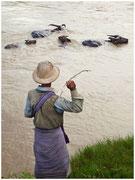 Un chaval trata de sacar los bueyes del agua tirándoles palos. © Daniel Roca García.