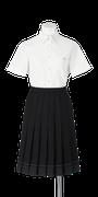 城北高校女子夏制服