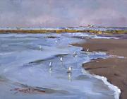 0325 Seagull Sunrise