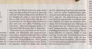 Süddeutsche Zeitung, 13.09.2017