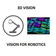 Vision 3D robotique