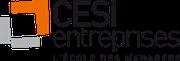 Centre de formation professionnelle, CESI Entreprise Brest, l'école des managers