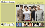 Fiche n°22. One Direction.