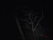 Hier noch ein weiterer Eindruck vom PU-Ort. #Ghosthunters #paranormal #übernatürlich #geist #ghosts