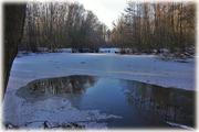 Der eiskalte Teich