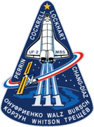 Space Shuttle STS-111 mission patch