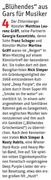 Bericht in der NÖN Horn (Woche 43), Copyright by Martin Kalchhauser