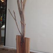 Der Baum - oder als Garderobe